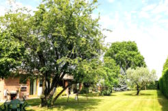 Villa indipendente di pregio